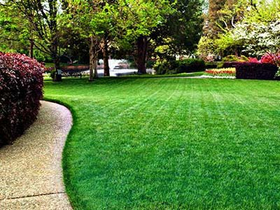 Lawn Maintenance New Orleans