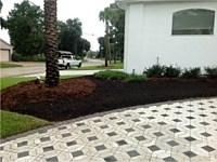 Current Thrive Landscaping Projects